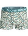 Bjorn Borg BB Badges Flamingo Biscay Green 2Pack Boxershorts