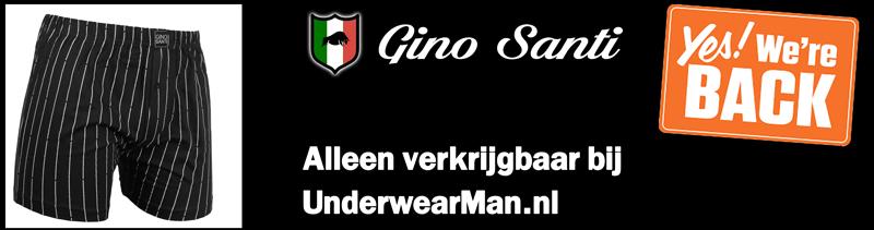 Gino Santi Banner