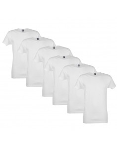 Alan Red T-Shirt Vermont 6Pack Wit